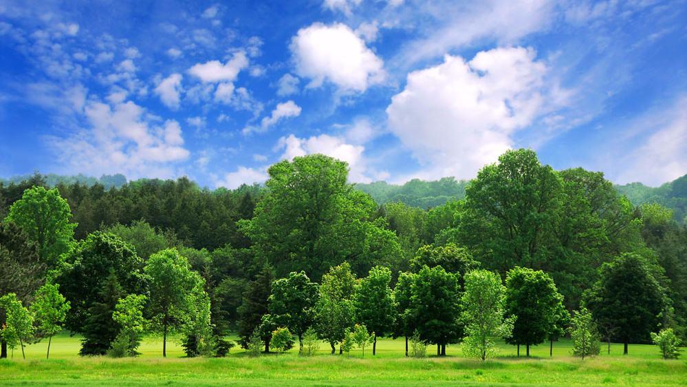 国务院办公厅关于生态环境保护 综合行政执法有关事项的通知