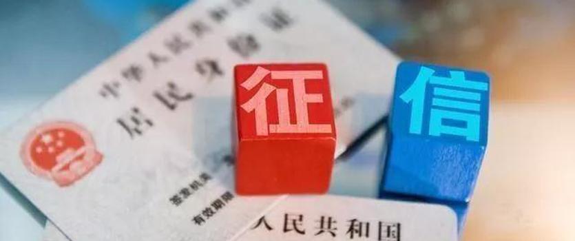 遂宁市人民政府 关于加强政务诚信建设的实施意见